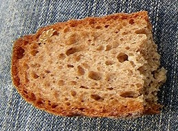 Brot, Foto: Manuel Werner, aus: http://hauswurz.jimdo.com/ausgew%C3%A4hlte-standorte/alpen/sempervivum-dolomiticum/