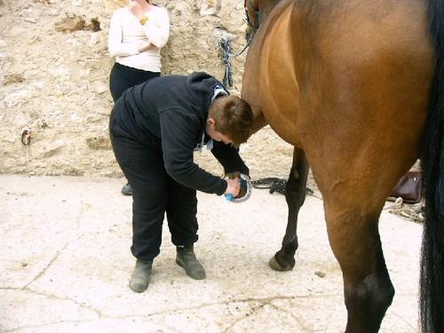 le curage des pieds c'est important et Thomas s'applique