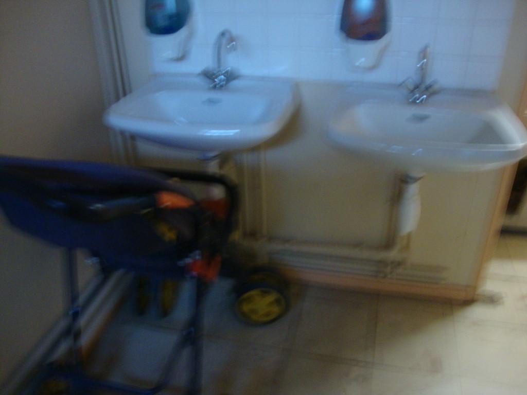 OZOIR LA FERRIERE toilettes encombrées