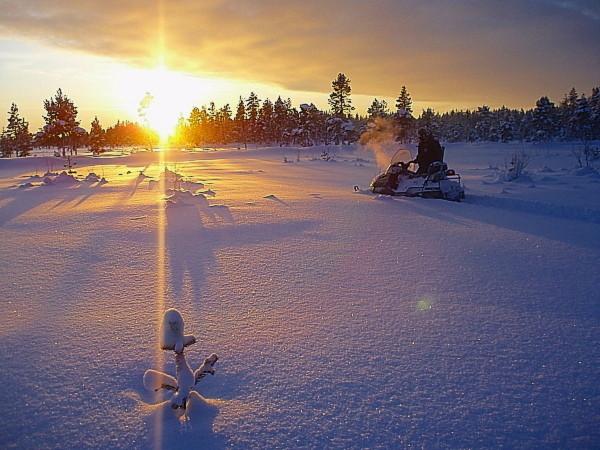 Schneemobil Abenteuer in Lappland