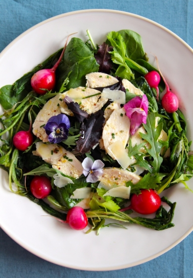 Summer ceasar salad with fried radishes