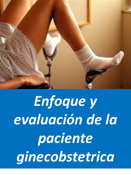 Evaluacion Paciente, Ginecoobstetra