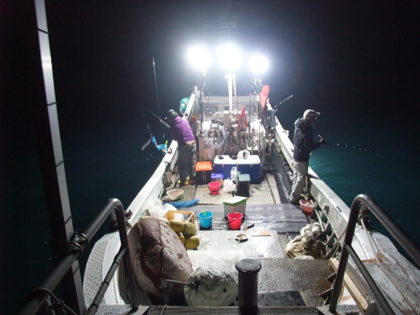 LED夜焚き遊漁