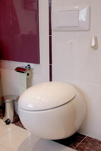 Création wc suspendu ovale