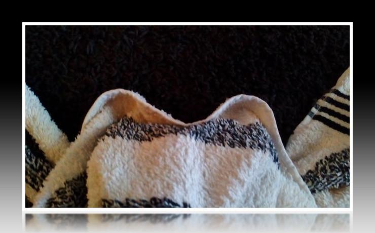 Handtuchfiguren falten Fledermaus für deine Zimmerdekoration. Origami mal mit Handtüchern. Falte niedliche Figuren, Tiere und andere Origami Motive aus deinen Badetücher oder Gästetücher. Servietten falten mit Handtüchern. Basteln mit Kindern und falten.