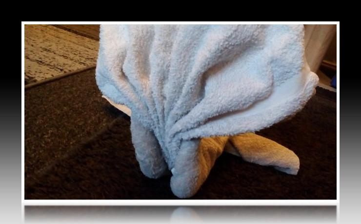 Handtuchfiguren falten Wal für deine Zimmerdekoration. Origami mal mit Handtüchern. Falte niedliche Figuren, Tiere und andere Origami Motive aus deinen Badetücher oder Gästetücher. Servietten falten mit Handtüchern. Basteln mit Kindern und falten.