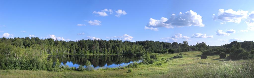 """""""Райковское озеро"""" деревня Райково. 2006г."""