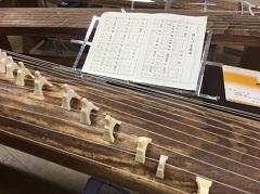 東大では箏曲研究会に所属しています。大学には高校では考えられないほど多彩なサークルがあります