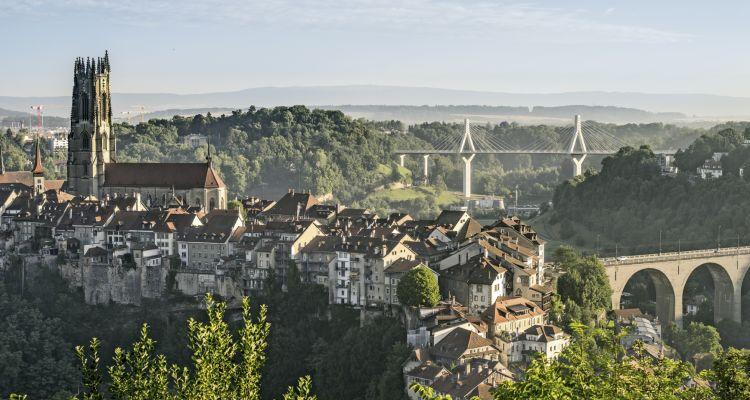 Diese Aussicht kann beim SSO Kongress im Forum Fribourg nicht genossen werden