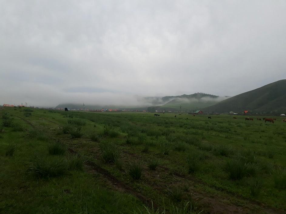 12 Grad und Nebel. Im Gegensatz zu der Schweiz ist es bei uns gerade eher tagsüber zu kalt und generell zu nass