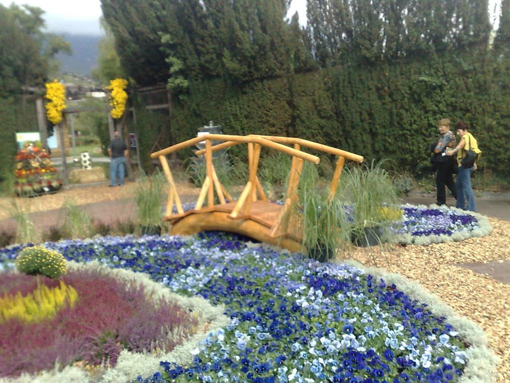 un ponton qui traverse une riviére de fleurs