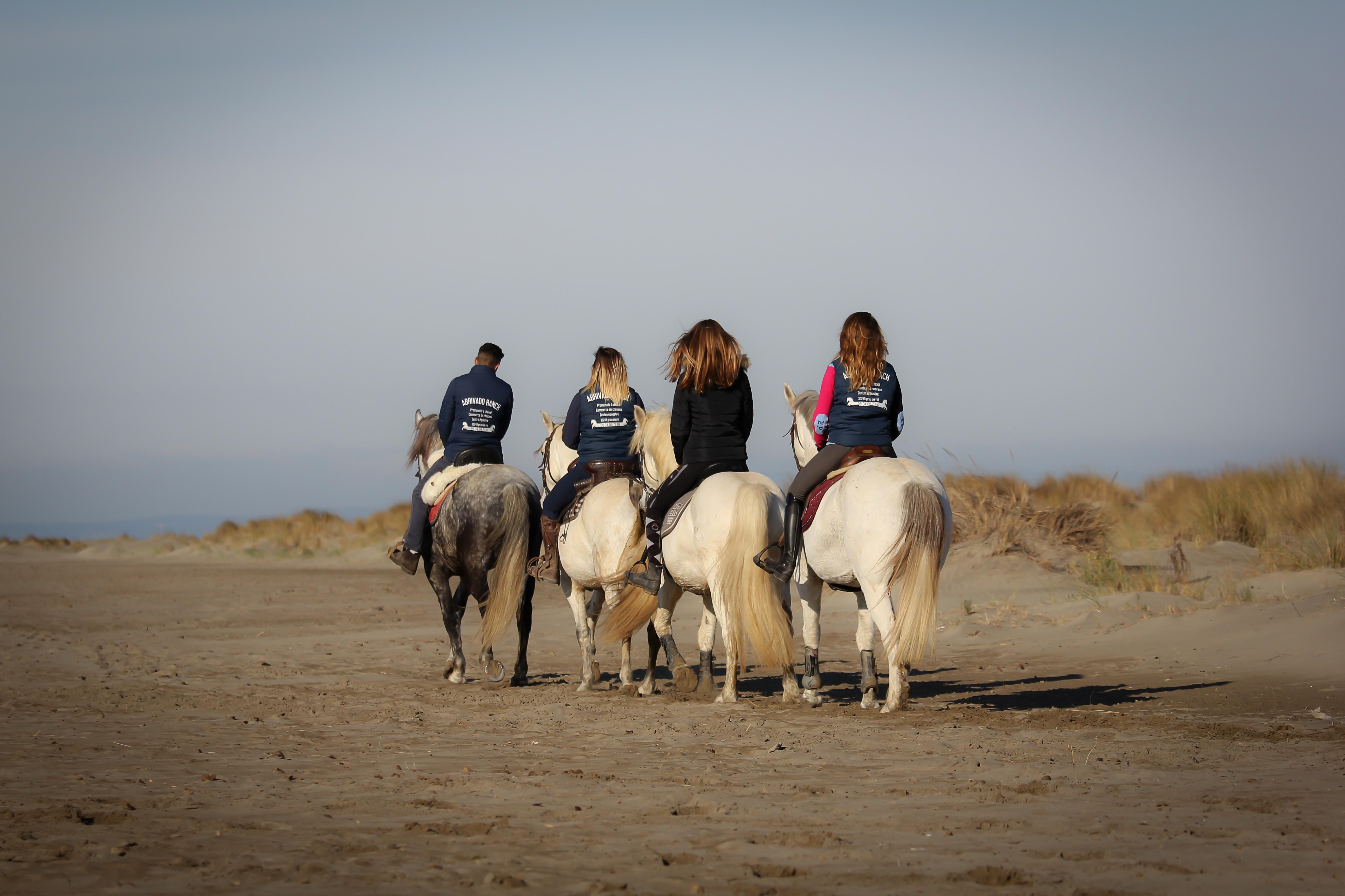 f562ef6c670 AbrivadoRanch   promenades et balades à cheval pour tous autour du ...