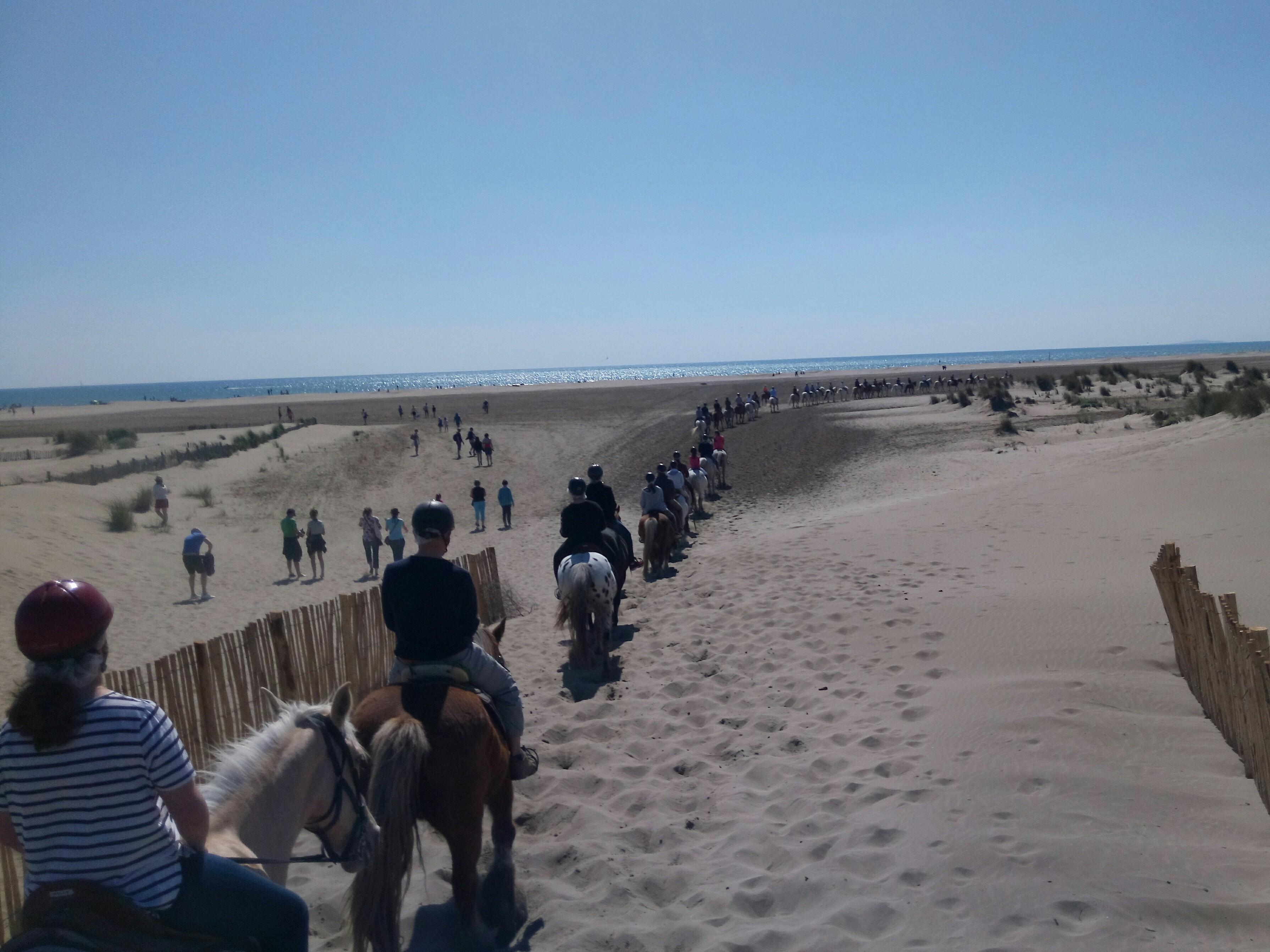Abrivadoranch: promenade à cheval 2 heures Plage et dunes en Camargue