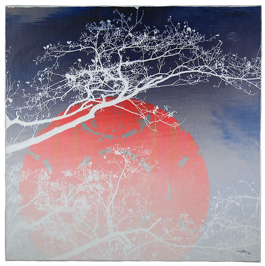 PACIELA (2014, 1/8, 65x65cm, MP0047, Photographien, Inkjet-Pigmentdruck auf Leinwand, Acryl) © Michael Pfenning. Verkauft/Sold: Nr. 1 von 8