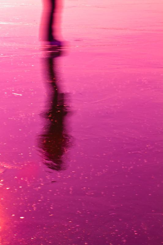 PINKIN ON ICE (2012, MP0140) © Michael Pfenning