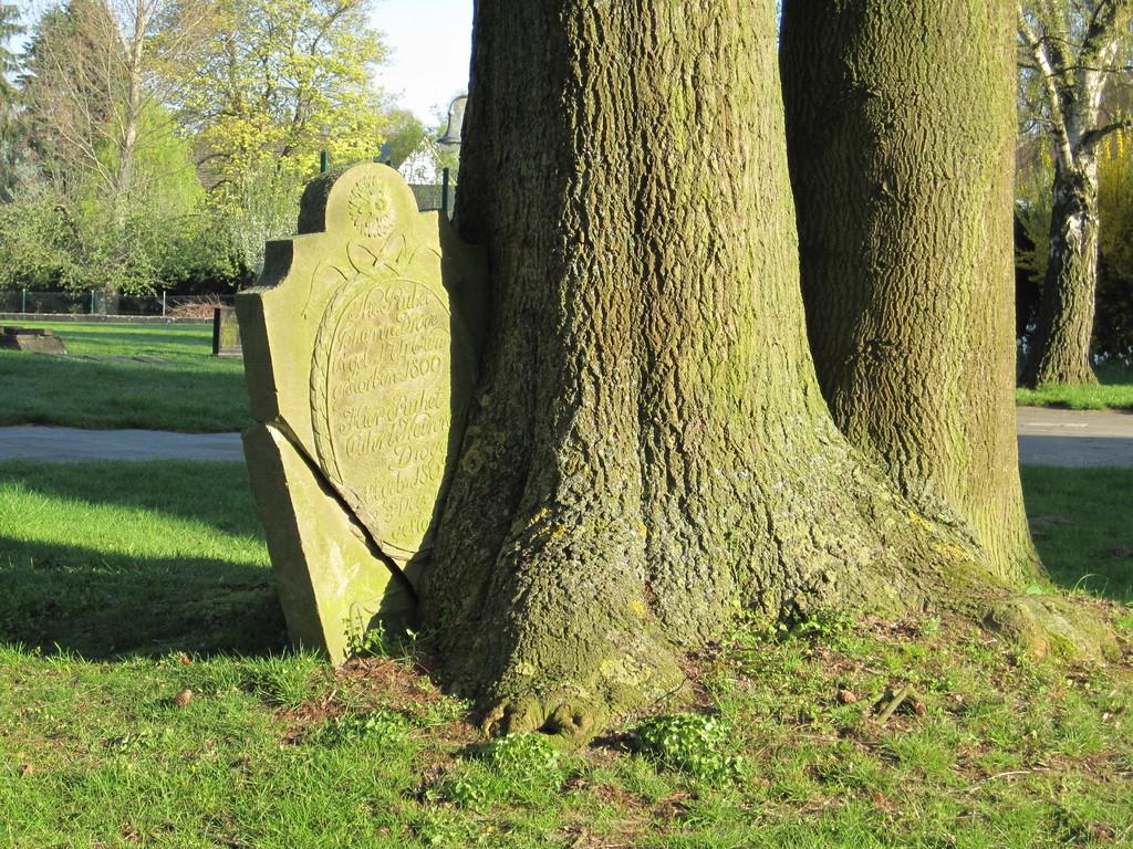 Leben und Tod auf dem alten Kirchfriedhof
