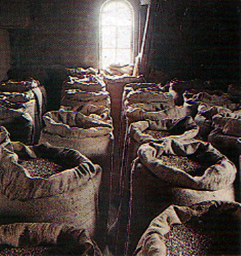 Getreidesäcke auf dem Kornboden