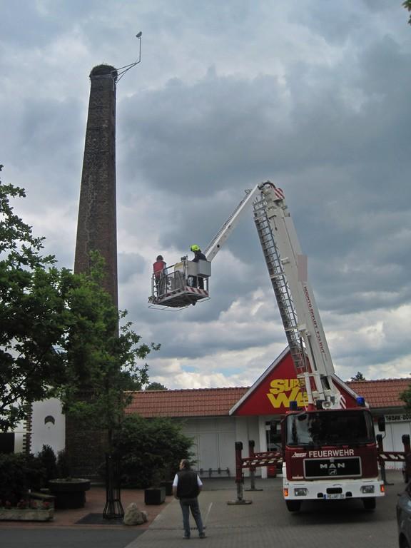Beringung mit Feuerwehr-Kran am 2. Juni