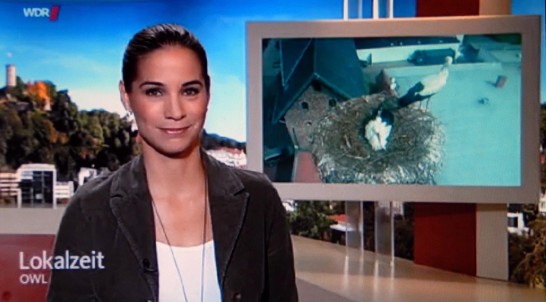 OWL-Lokalzeit vom 17. April berichtete aus Hille