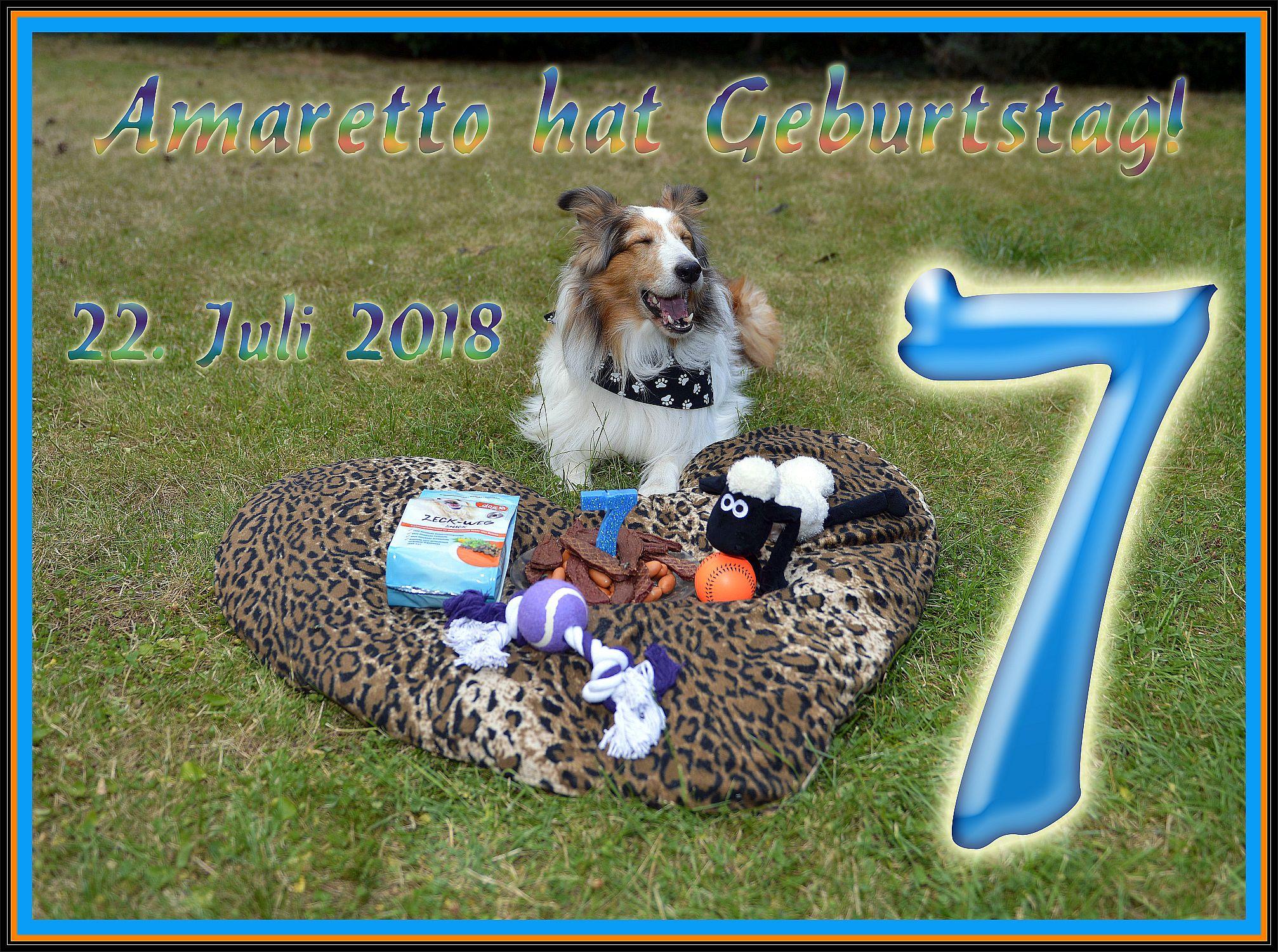 22. Juli 2018 - mein 7. Geburtstag