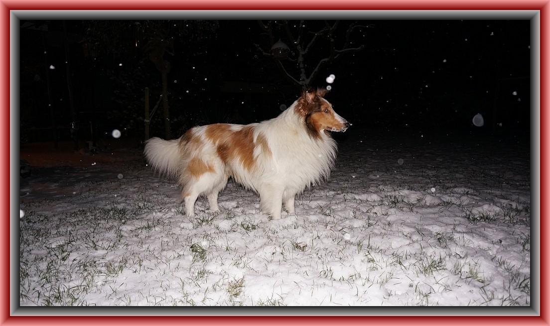 """14. Januar 2013  """"Endlich wieder Schnee, ist das toll!"""""""