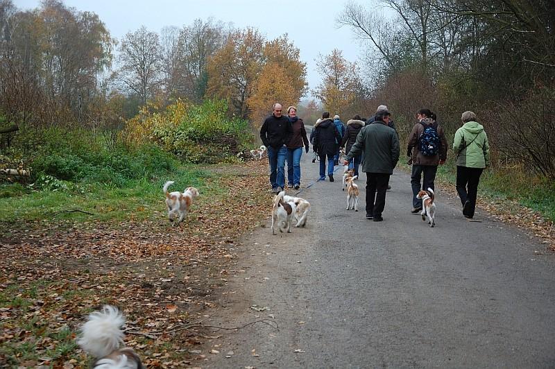 13.11.2011 kuckuck, wo bin ich ??? :-)
