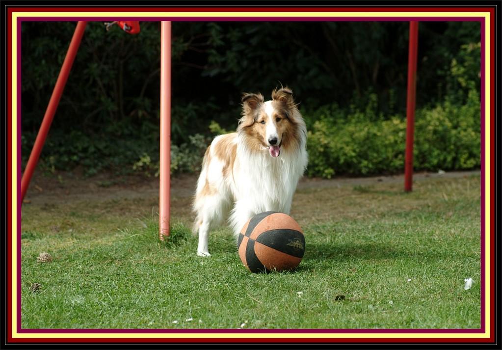"""""""Ich halte jeden Ball!"""""""
