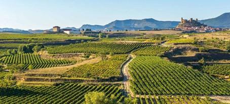 Weinreise Rioja