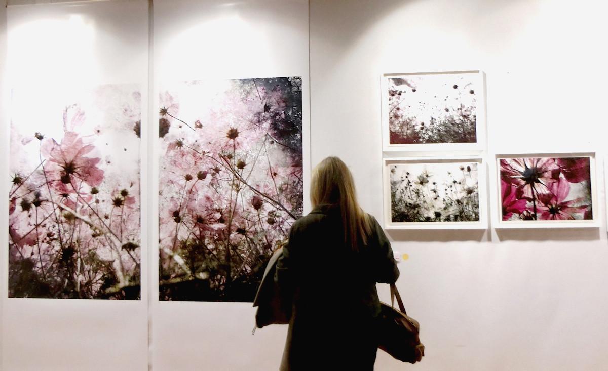 2015年11月パリで開催されたfotofeverの展示風景。