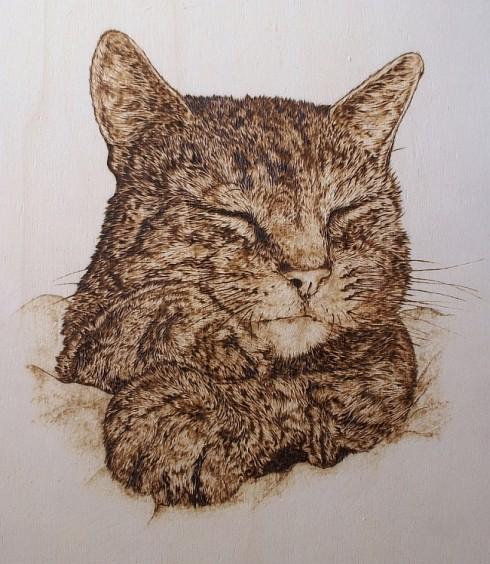 """""""Schlafende Katze"""""""