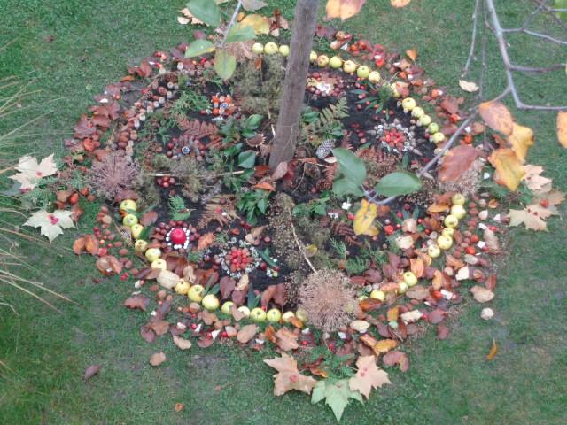 Das Mandala am Apfelbaum.                                       Dank den Sammlerinnen und Gestalterinnen!