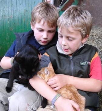 Felix und Lucas