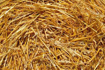 Stroh, ein natürlicher Baustoff