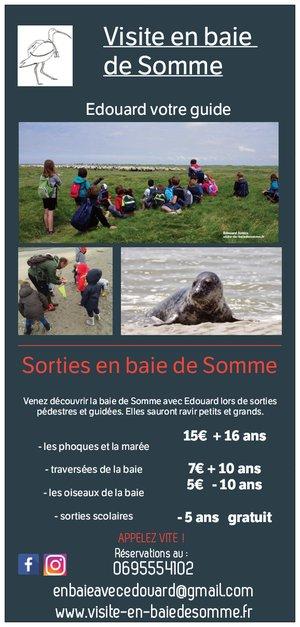 sorties et randonnées en baie de Somme : traversée, phoques baie de Somme
