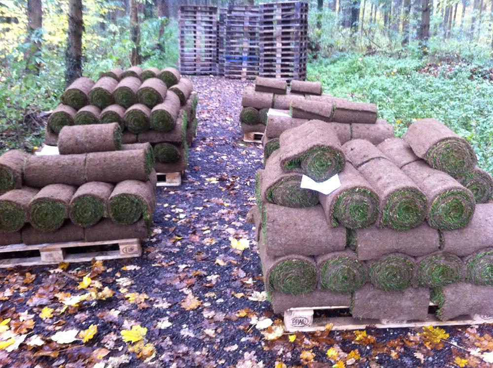Paletten mit Rollrasen im Wald am Schatten zum Verlad bereit. Nach Kunden geordnet.