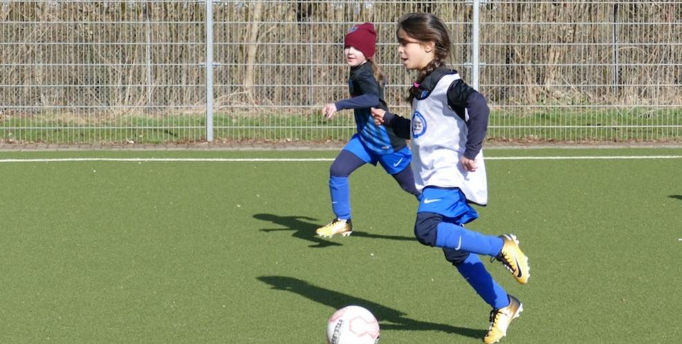 SG Oldesloe/Reinfeld - Übersicht der Teams und Trainingszeiten