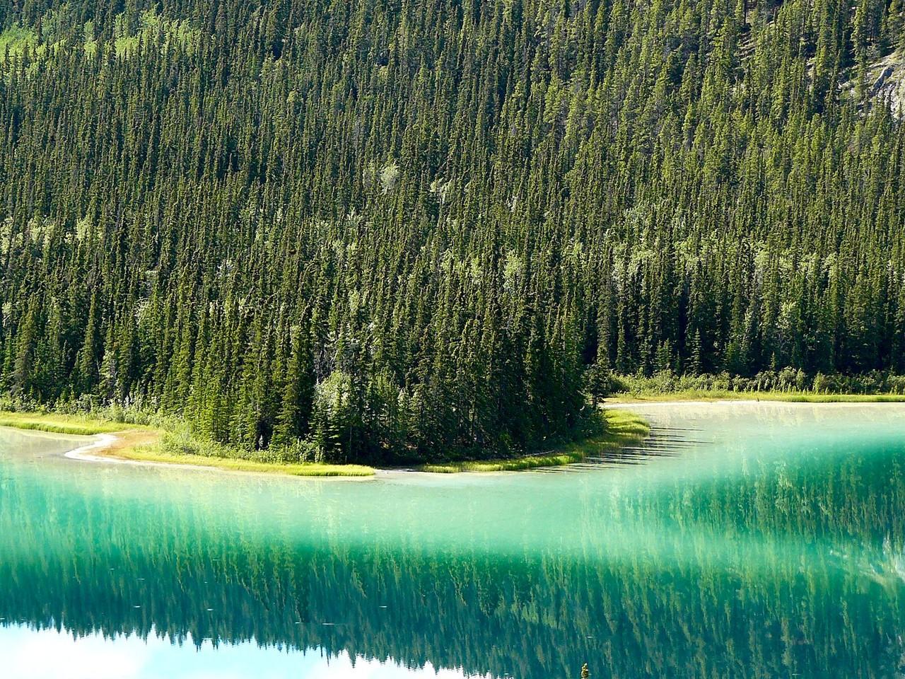 <B>Der Emerald Lake in Kanada