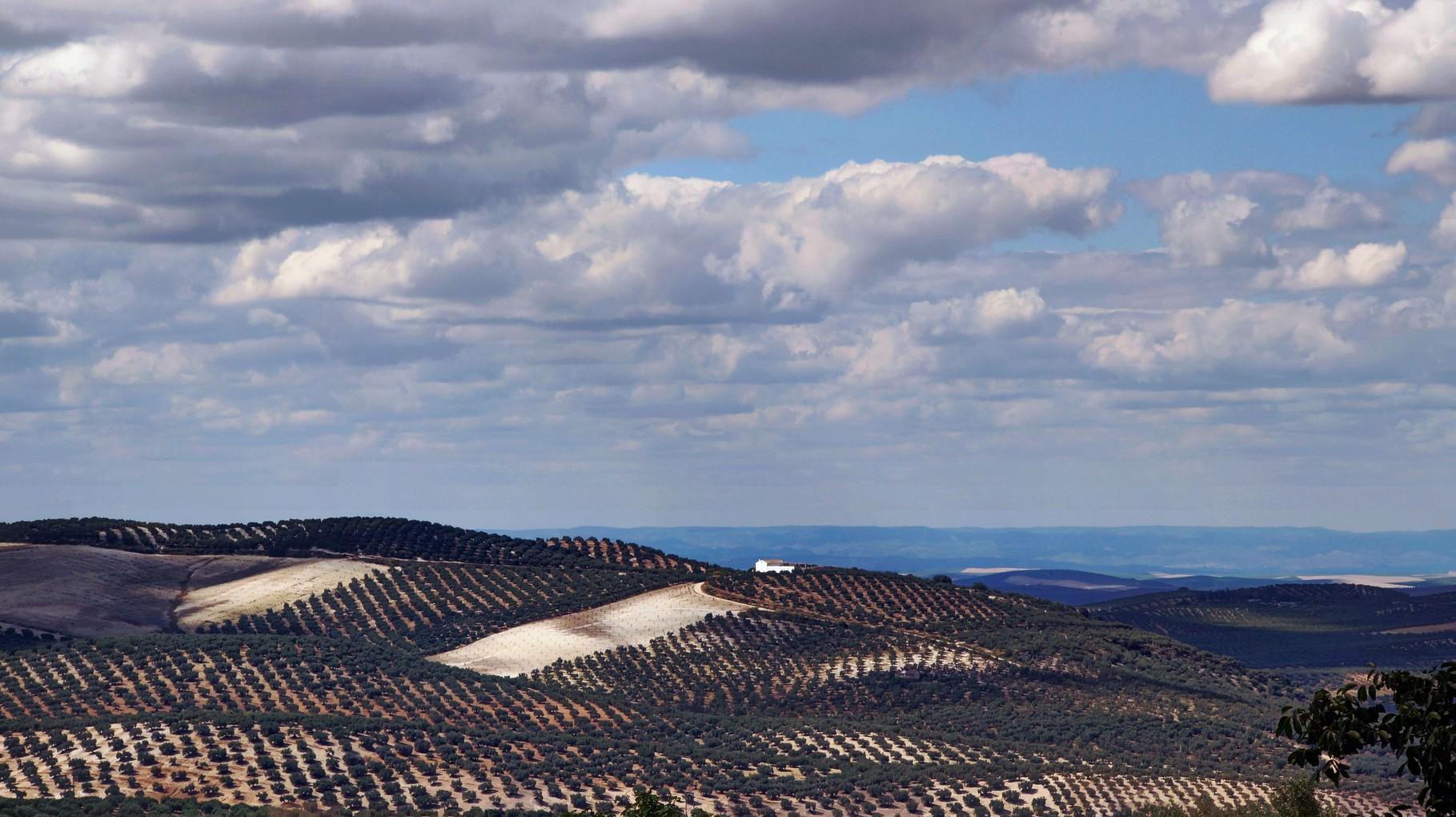 <B>Auf geht's in Spaniens Landesinnere, das uns mit abwechslungsreicher Landschaft und reichhaltiger Vegetation begrüsst.</B>