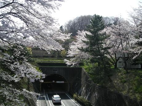 近くの中大隧道