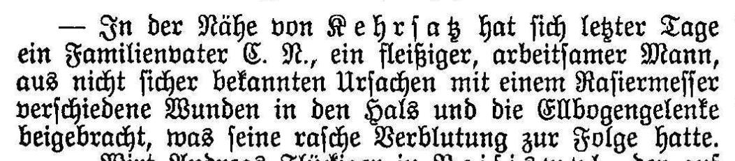 1894.07.02 - Der Bund - Verletzung