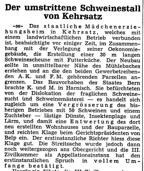 1954.05.19 - Der Bund - Schweinestall