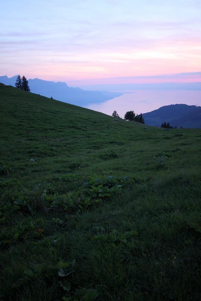 Lac Léman depuis le col de Jaman (Suisse)