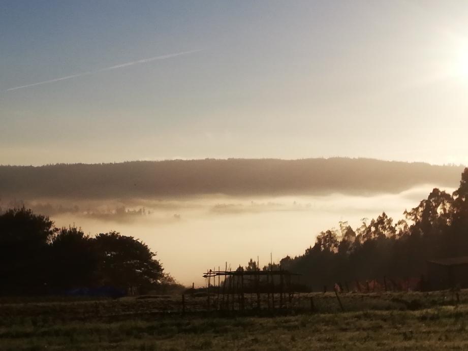Morgennebel über Negreira