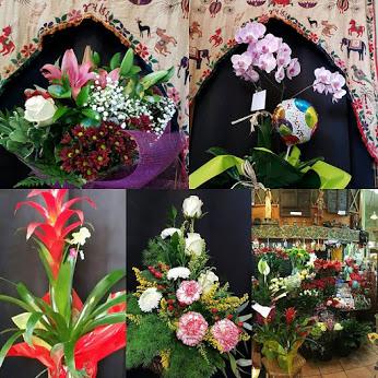 Ramos, plantas , plantas carnivoras , plantas aromáticas,orquídeas ,regalos y mucho mas ven a visitarnos !