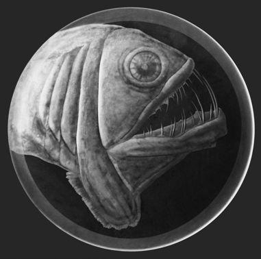 Teller Viperfisch Gravur, Dm 29 cm