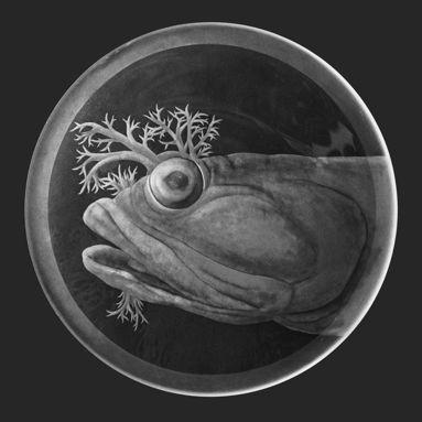 Teller Schleimfisch Gravur Dm 29 cm