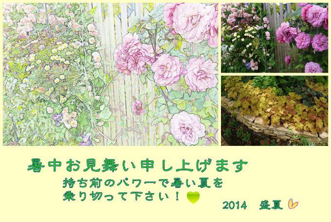 Y.I03 Photoscape