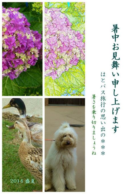 Kiyoko.K03 Photoscape