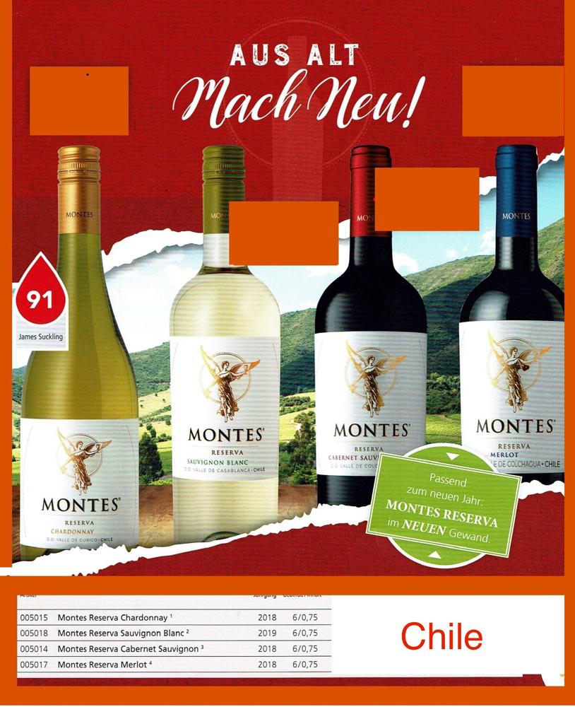 MONTES-Chile