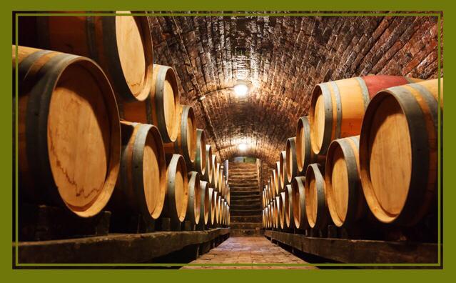 Beste Rot- & Weißweine